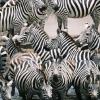 Fair Travel | Tanzania