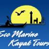 Eco Marine Kayak Tours
